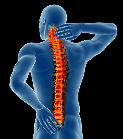spinal-pain