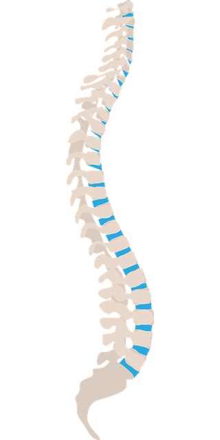 Neurosurgical spine surgery and treatment